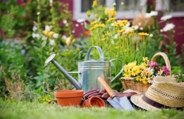 7 Consejos de jardinería